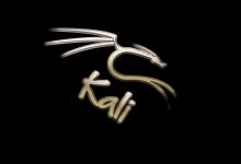 raspbian系统如何安装Kali tools?