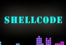 任意程序添加ShellCode